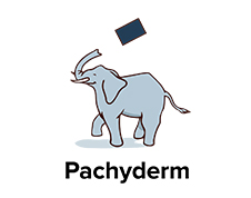 Data Infrastructure company Pachyderm separates itself with unique functionality